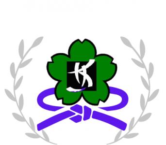 Kiora Kung Fu Purple Sash