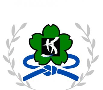 Kiora Kung Fu Blue Sash