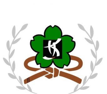 Kiora Kung Fu 2nd brown sash